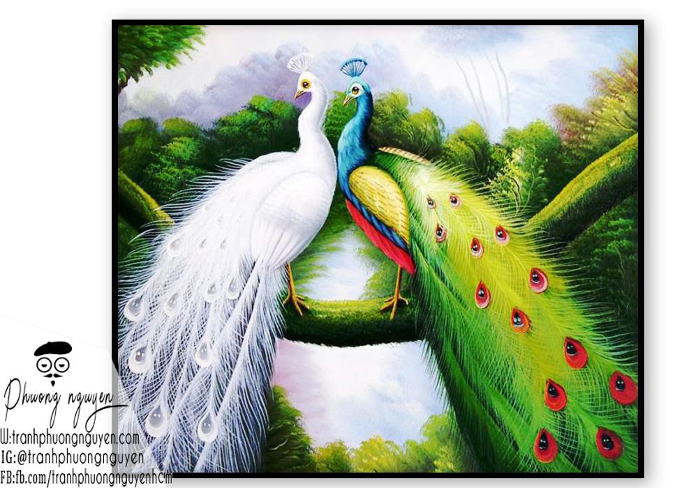 Tranh đôi chim công trắng đẹp phong thủy
