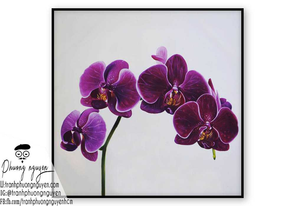 Tranh hoa lan - PN1408