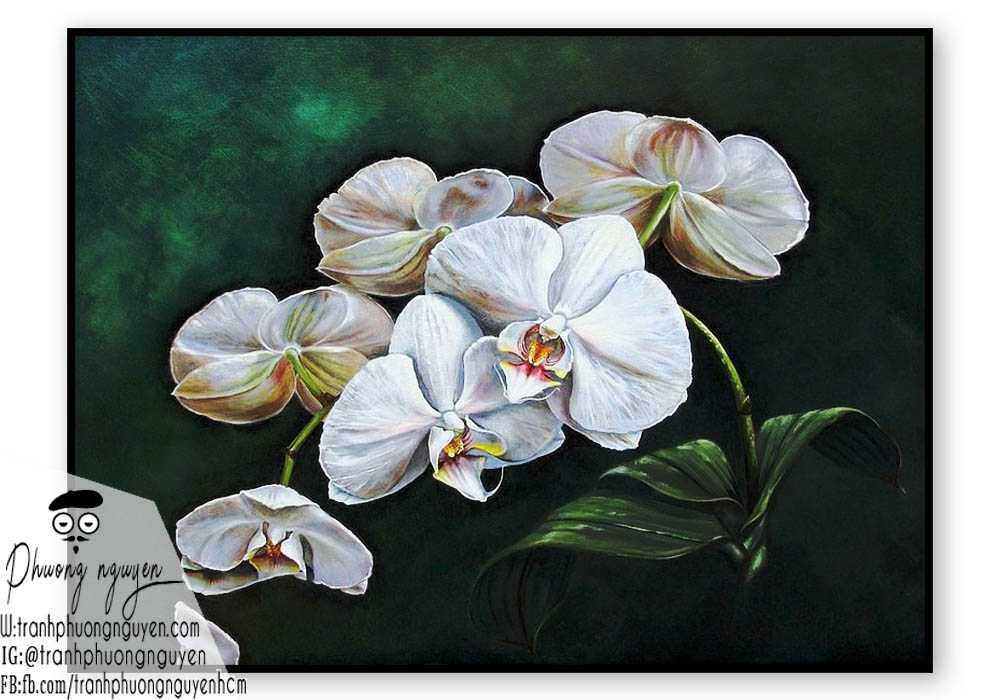 Tranh hoa lan - PN1415