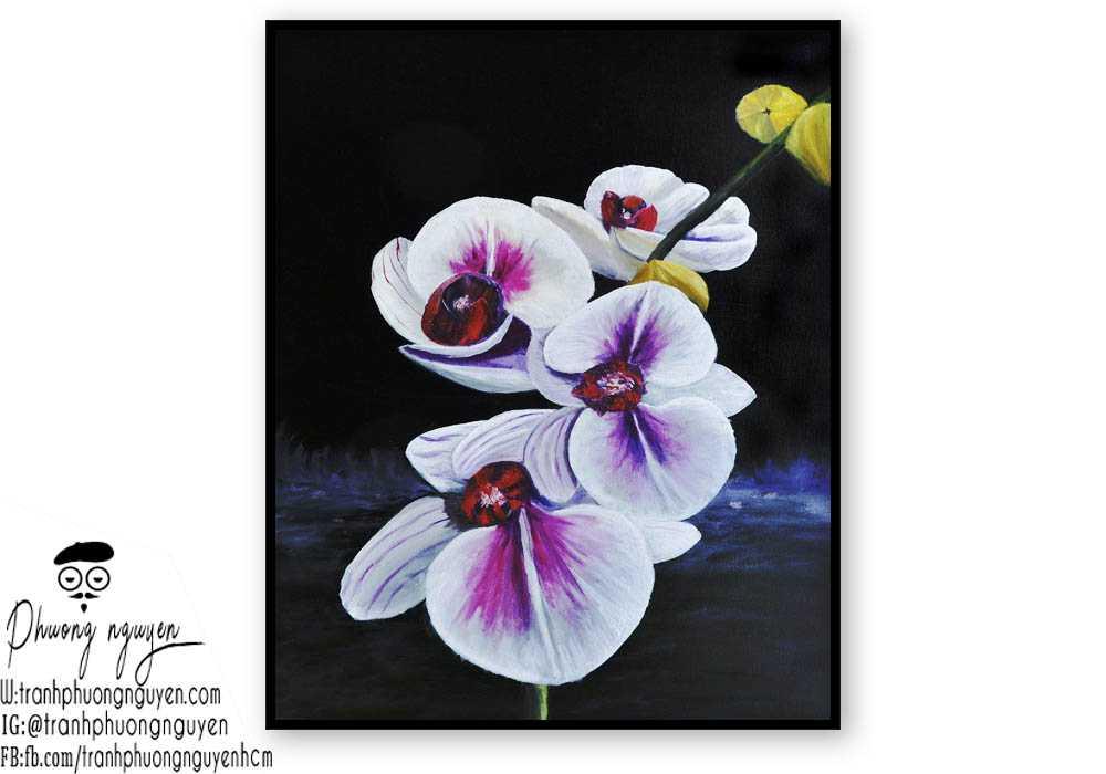 Tranh hoa lan - PN1419