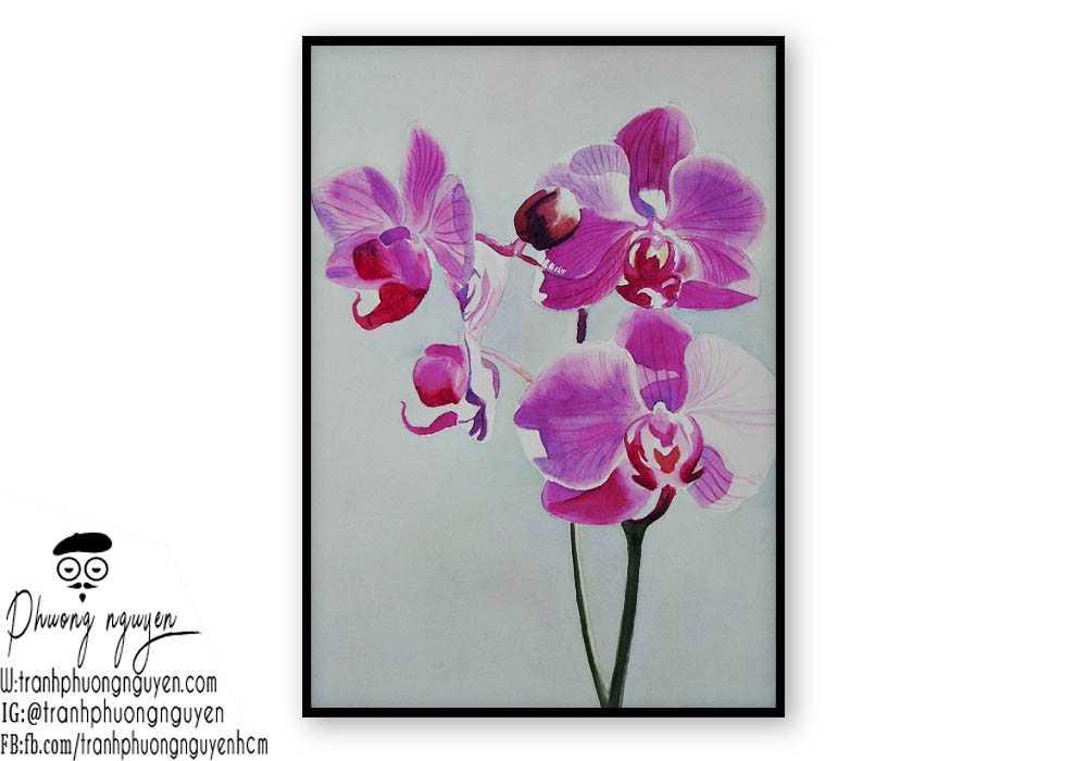 Tranh hoa lan - PN1428