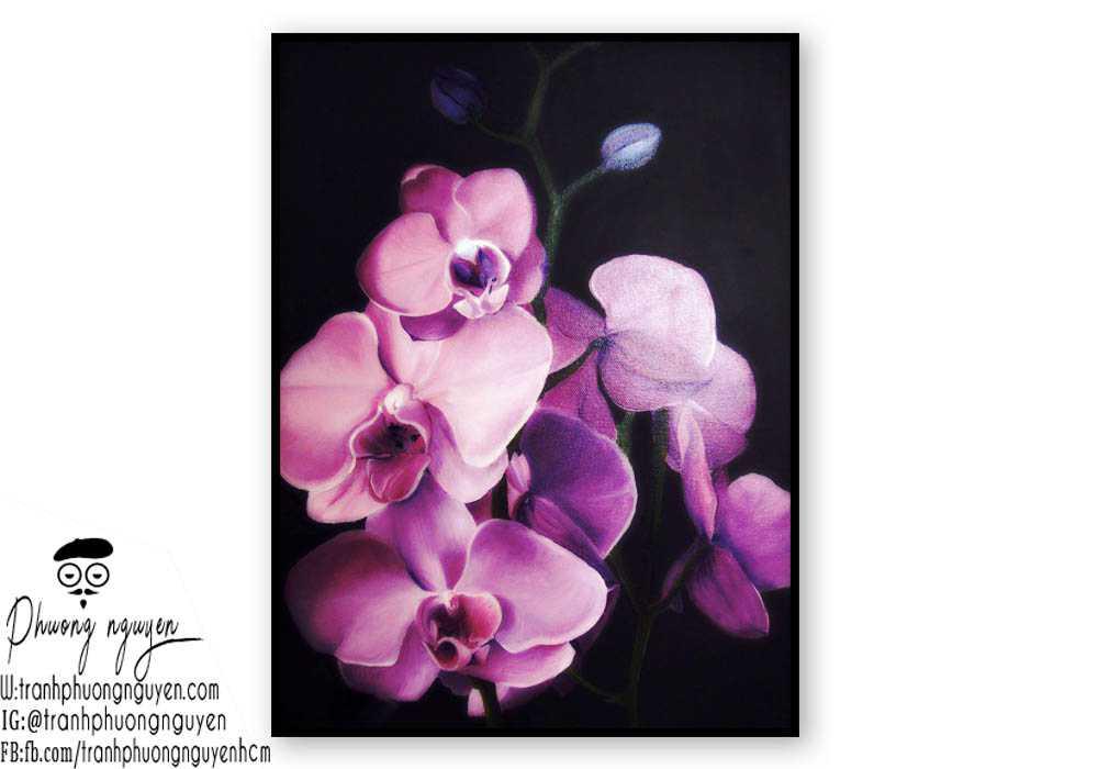 Tranh sơn dầu hoa lan - PN1385