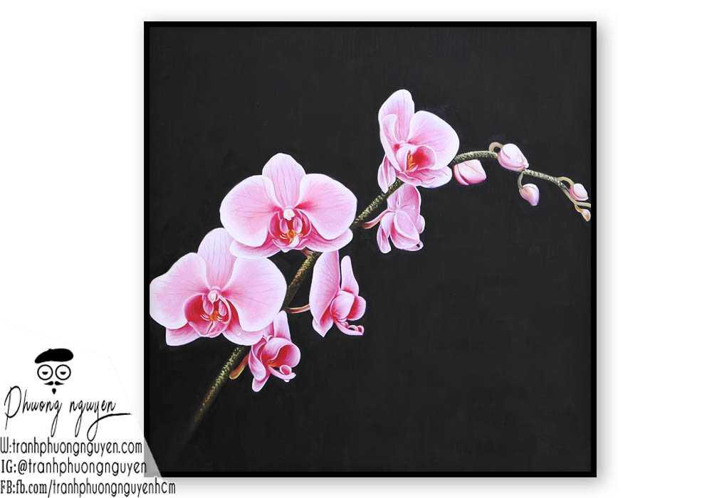 Tranh sơn dầu hoa lan - PN1387