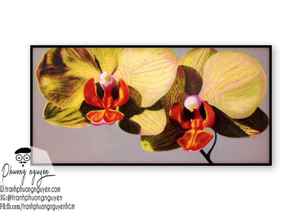 Tranh sơn dầu hoa lan - PN1391