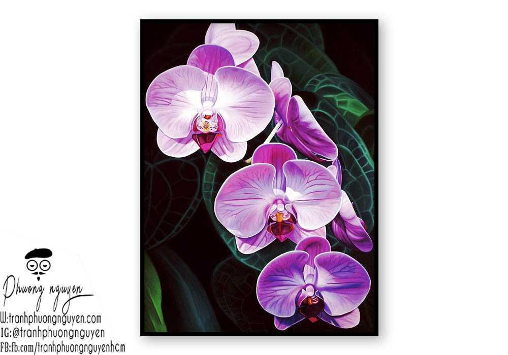 Tranh sơn dầu hoa lan - PN1396