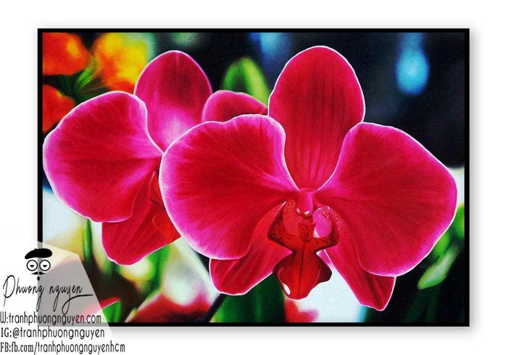 Tranh sơn dầu hoa lan - PN1397
