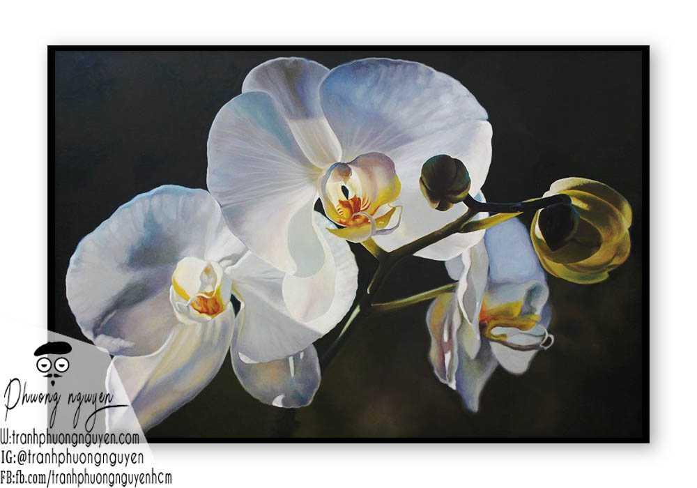 Tranh sơn dầu hoa lan - PN1403