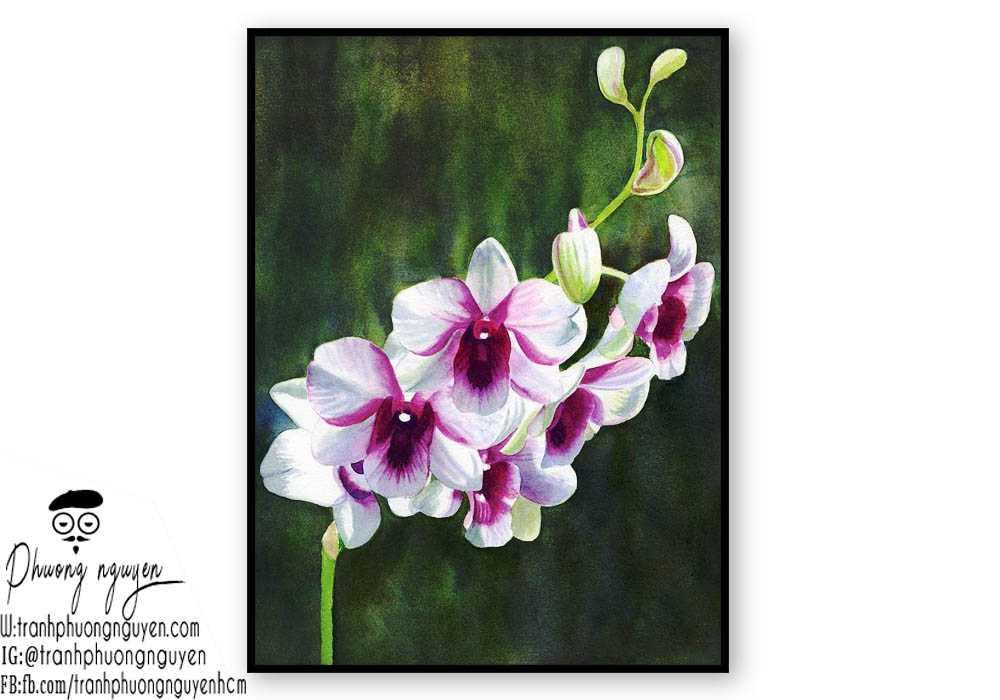 Tranh sơn dầu hoa lan - PN1406