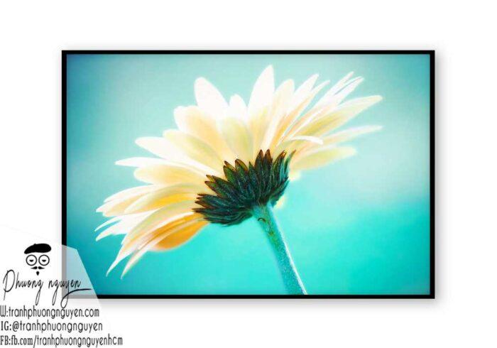 Tranh sơn dầu hoa cúc - PN1444